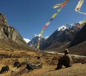 Similar Tibet Culture and Langtang Valley Trekking - 12 Days