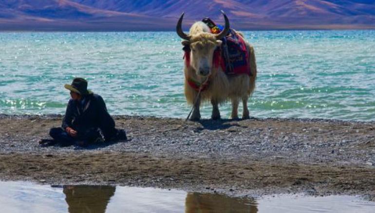 Namtso Lake Trek - 10 Days