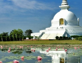 Buddhist Pilgrimage Tour - 8 Days